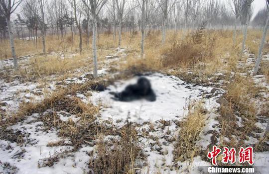 女婿砍死岳父并焚尸 内蒙古警方破获积压9年命案