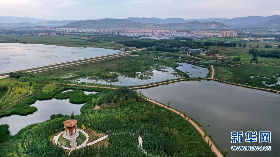 山西广灵:湿地颐养 塞上水城
