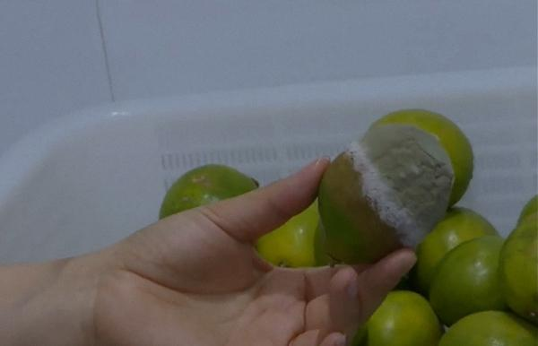 江苏淮安:市监局查到一CoCo奶茶店有霉变水果,但未使用