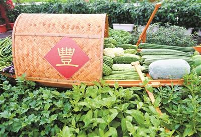 广州推进农业保险 险种更多险额增加