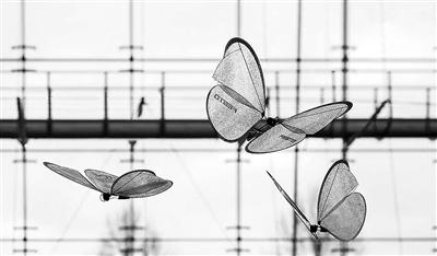 仿生无人机:外形酷似蝴蝶 在未来军事领域有大用