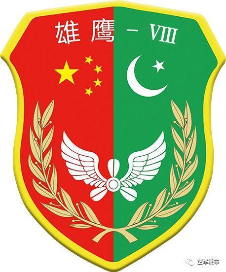 中巴空军在中国西北联合训练 出动飞豹、枭龙等多型战机