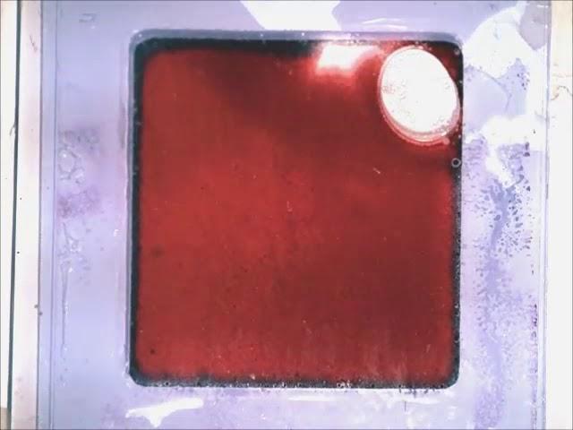 剑桥团队研制纳米级可变色人造皮肤