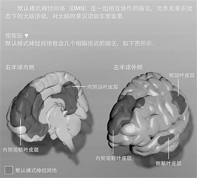 神经科学家告诉你 当你发呆时大脑在做什么?