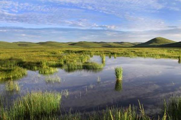 初秋时节甘肃岷县近百万亩湿地草原水清草绿