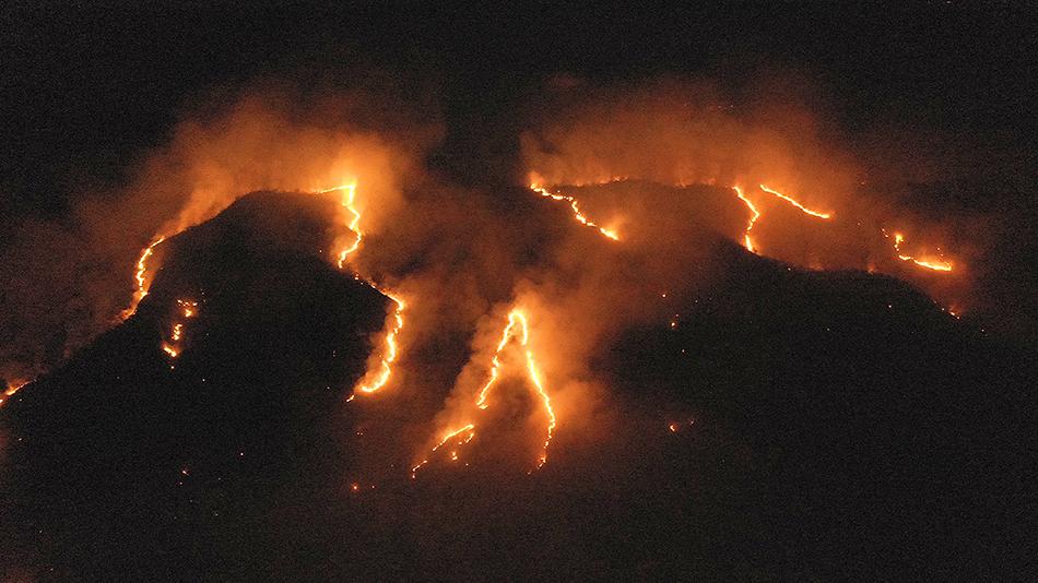 如果亚马孙雨林烧光了世界会怎样?或永无四季交替