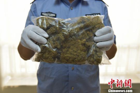南宁海关邮递渠道查获多起大麻走私案