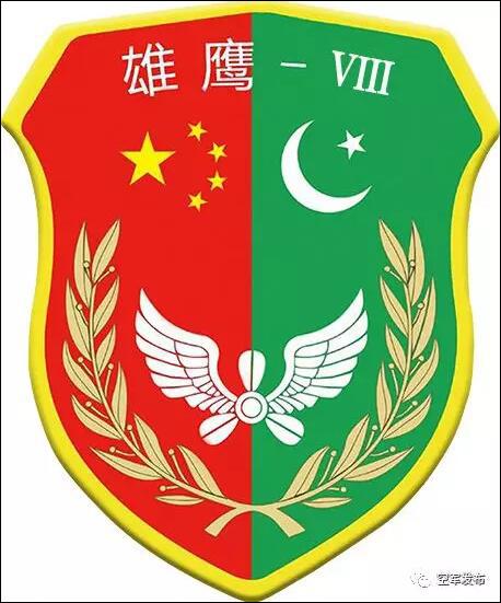 中巴空军在中国境内举行联合训练 不针对第三方