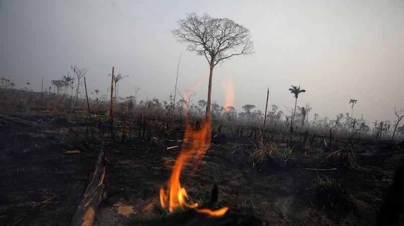 全世界都在关心亚马逊的大火,但非洲这场大火也烧得不小