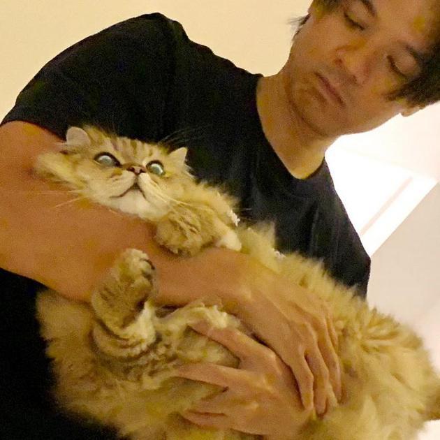 晒猫顺便晒老公!舒淇罕见放闪 晒冯德伦抱爱猫照