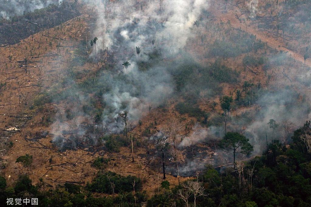 实拍巴西亚马孙雨林大火 浓烟滚滚满目苍夷
