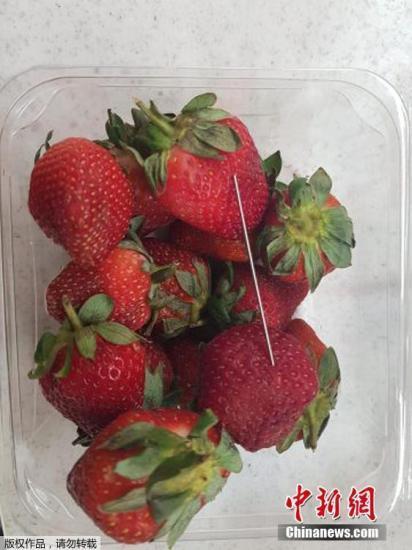 """澳大年夜利亚再产生""""草莓藏钉""""案 系一周之内第二起"""