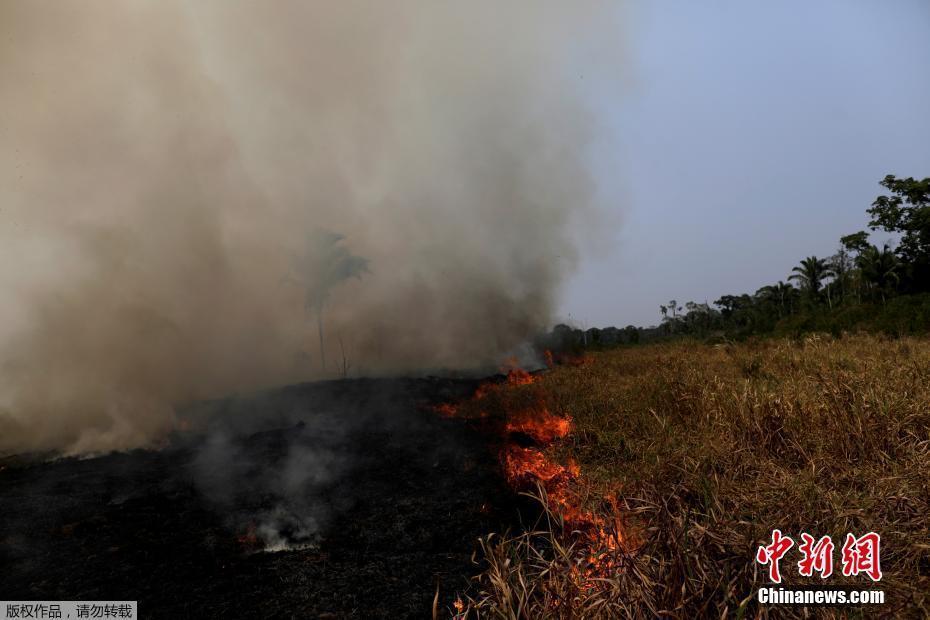 实拍巴西亚马逊雨林火灾 大火浓烟超百米