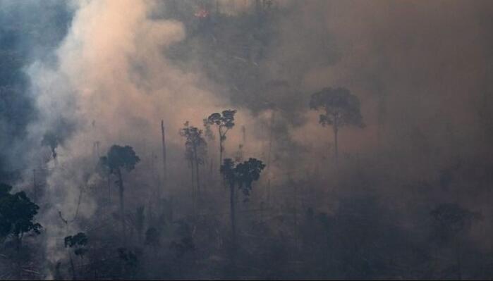 巴西总统府幕僚长:马克龙连巴黎圣母院大火都没阻止,他还想给我们上课?