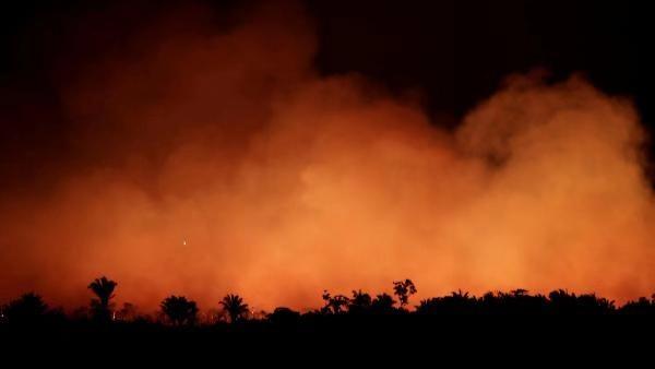 巴西总统下令严查亚马孙纵火事件