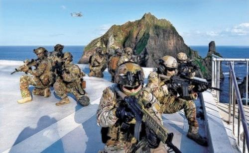 美国罕见批评韩国独岛军演 韩方这样回应
