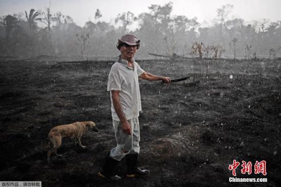 亚马孙林火肆虐 秘鲁和哥伦比亚提议召开紧急峰会