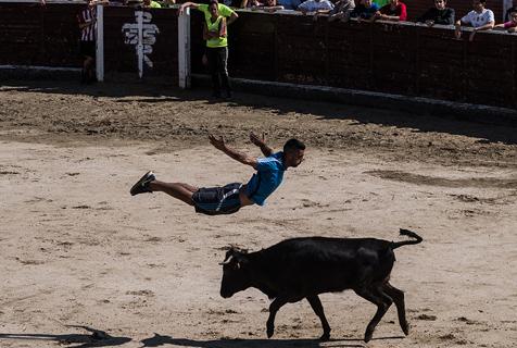 """西班牙举办""""奔牛""""活动 """"牛追人""""挑战勇气胆量"""