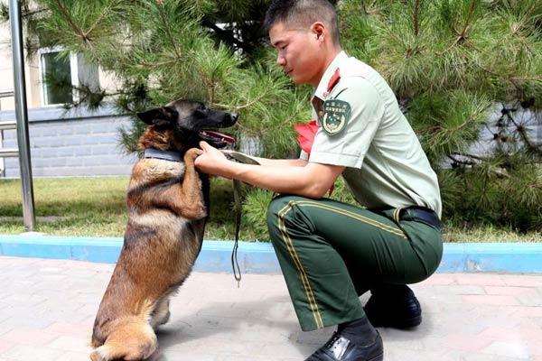 """宁夏武警士兵退役 与军犬""""握手""""告别"""