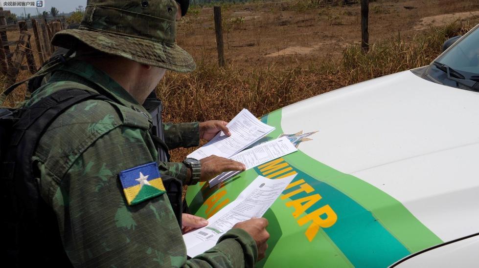 巴西政府宣布禁火令 亚马孙森林大火抗灾形势严峻