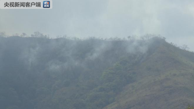 亚马孙雨林大火至今无明显缓解 新的火情仍在不断出现