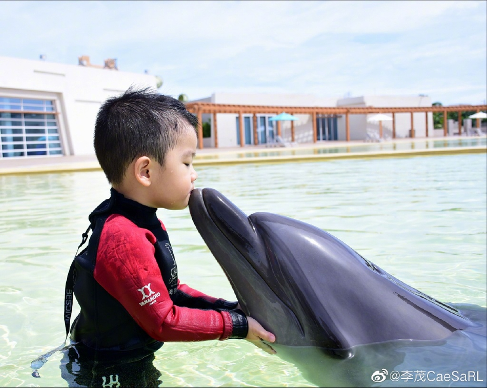 李茂一家三口海邊度假 暖暖親吻海豚弦子穿修身黑裙身材好