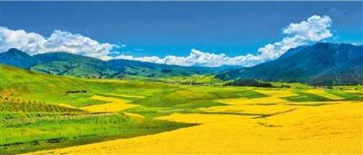 """新疆木垒:""""中国农业公园""""带火乡村游"""