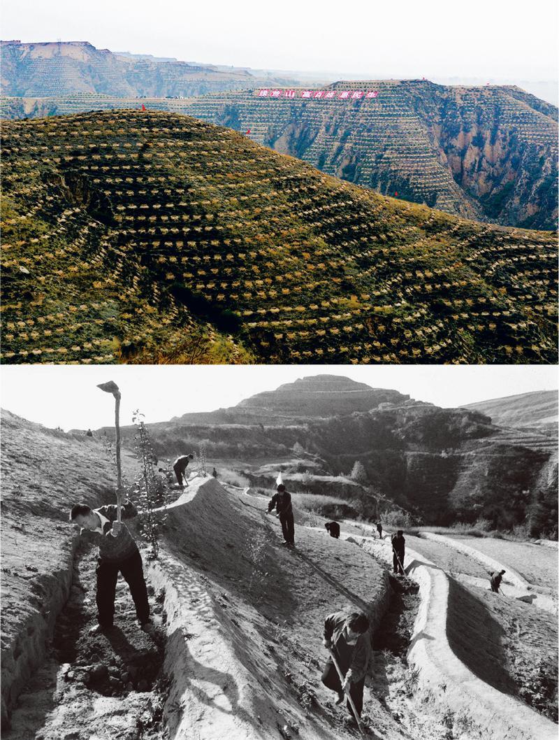 开什么店赚钱:新中国70年创造人类减贫奇迹