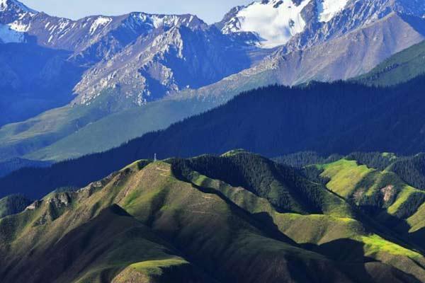 祁連山肅南段秋日黛山覆白雪 草原秀麗牛羊遍野