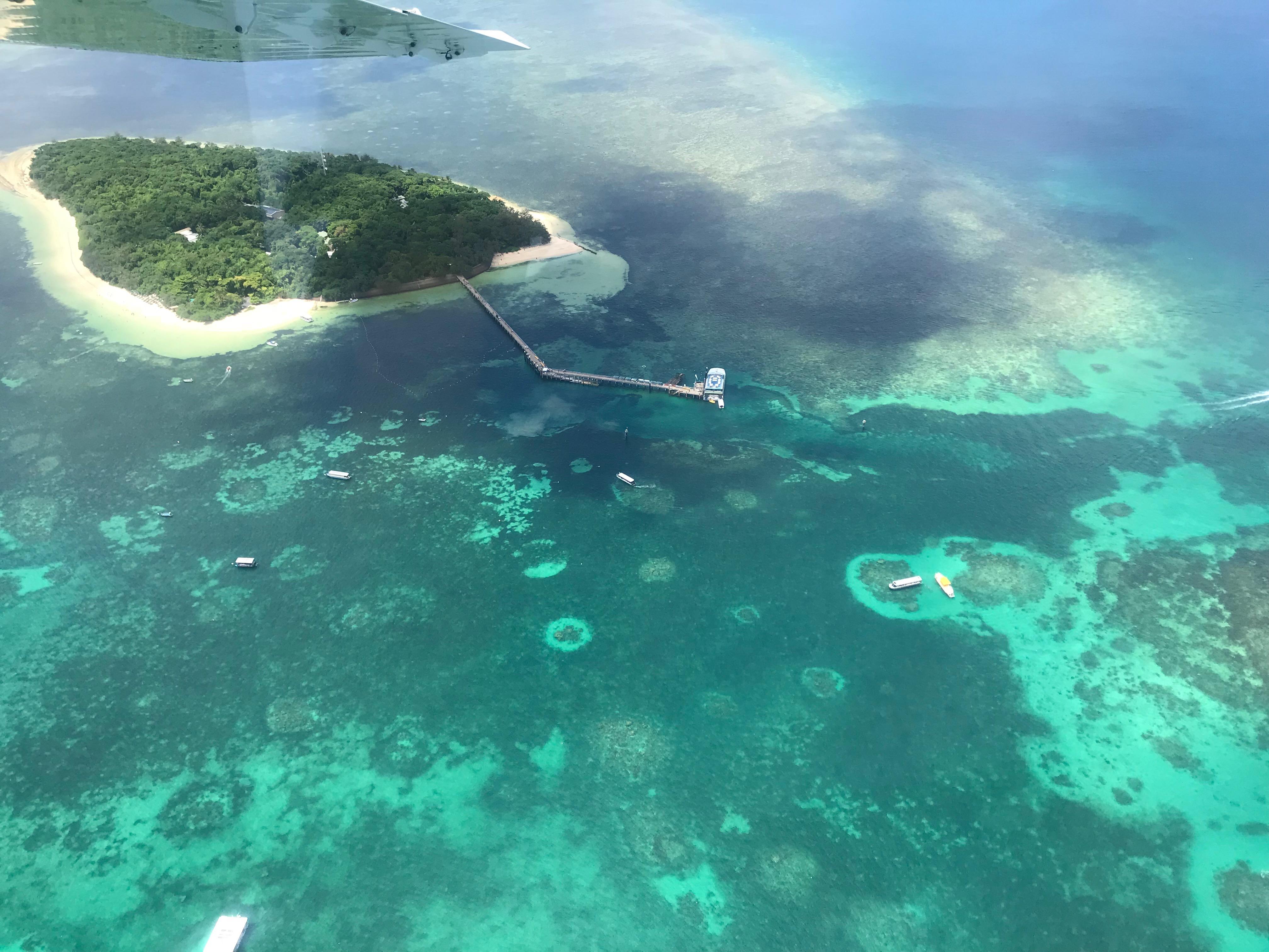 """澳政府机构将大堡礁前景评级降为""""非常糟糕"""""""