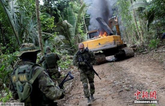 亚马孙雨林仍在燃烧 背后牵涉哪些利益问题?