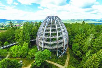 环游 | 在巴伐利亚,像鸟一样俯瞰森林