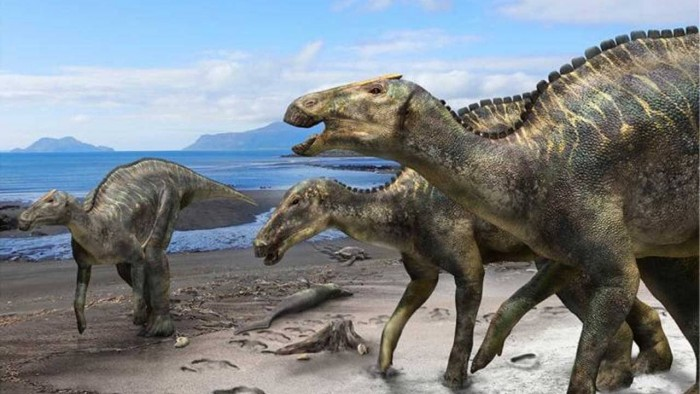科学家发现了一种新的_奶粉销毁_鸭嘴恐龙 命名为日本镰刀龙