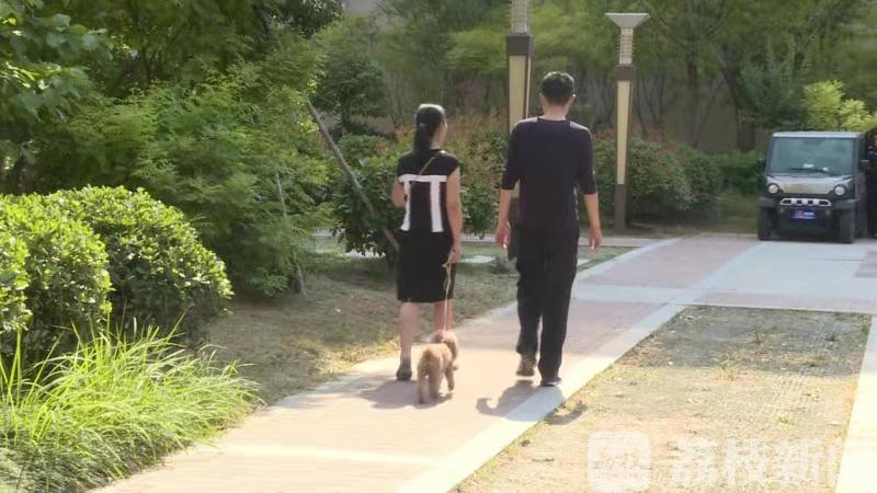 @养狗人!出门遛狗也能被碰瓷,这个团伙已经作案200多起