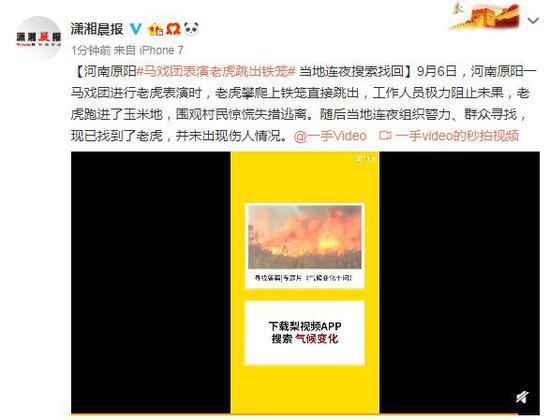 河南原阳马戏团表演老虎跳出铁笼 当地连夜找回