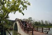 江苏南京:激发乡村活力 绽放水乡魅力