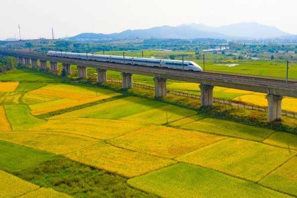 航拍高铁列车飞驰在江西金色田园