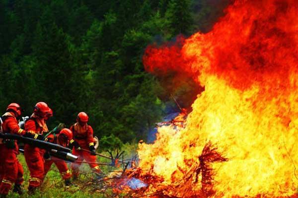 甘肃森林消防开展野外驻训演练