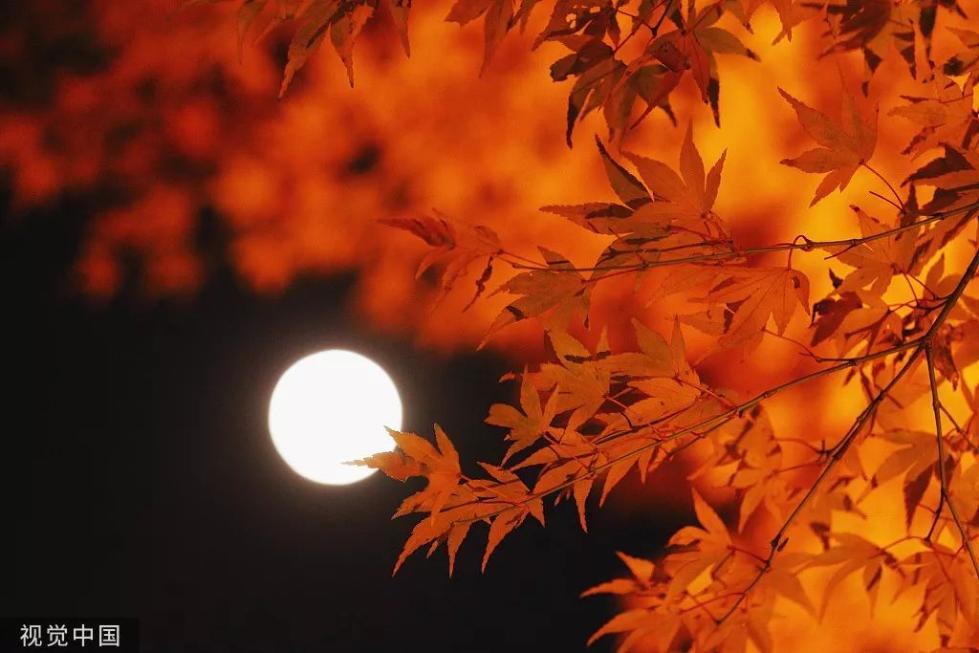 教你赚钱:今年中秋,这个时候的月亮最圆!