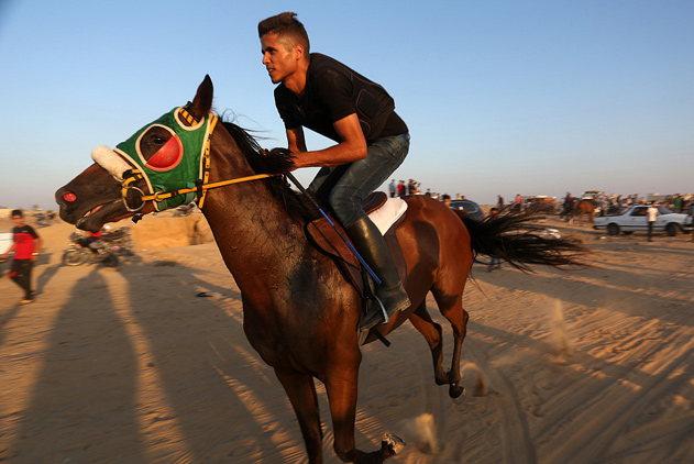 加沙地带举办赛马活动 上演速度与激情
