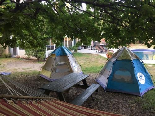 美媒:美国华人圈兴起消暑新玩法 搭帐篷夜宿自家后院