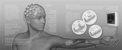 神经接口技术 且行且规范