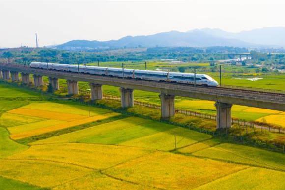 航拍:高铁列车飞驰金色田园