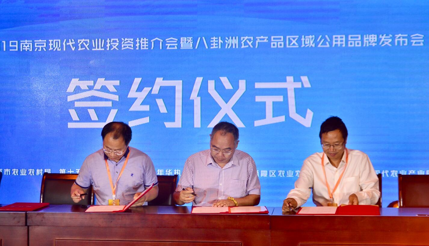 13个现代农业项目集中签约 南京现代农业产业走向中高端