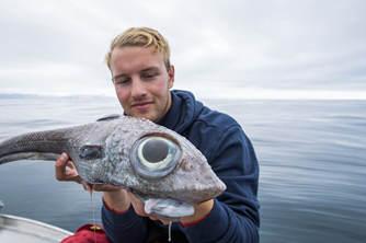 """挪威男子钓到深海鱼 长一双""""卡姿兰大眼"""""""