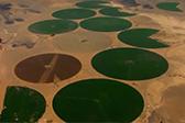约旦沙漠的圆片绿洲