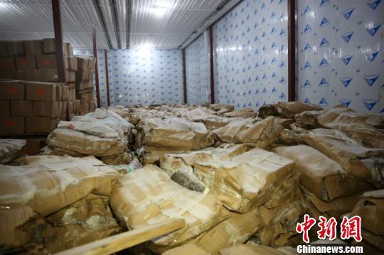 南宁海关破获重大海产品走私案 案值约1亿元
