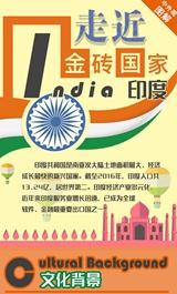 金砖国家系列图解之印度篇