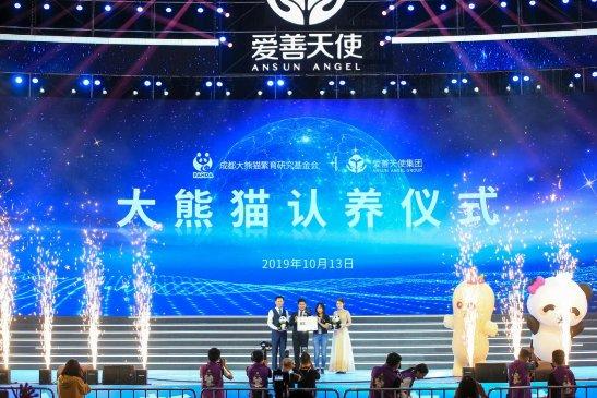 """爱善天使集团认养大熊猫""""俏妃""""启动大熊猫公益保护"""