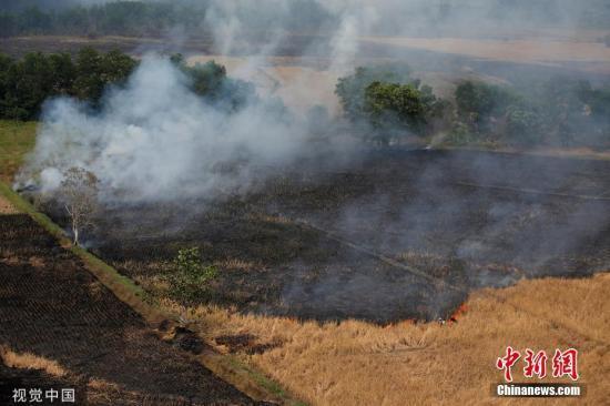 印尼苏门答腊岛东部城市发生严重空气污染事件